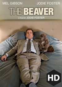 HD The Beaver